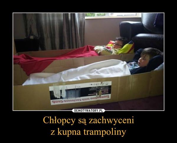 Chłopcy są zachwyceniz kupna trampoliny –