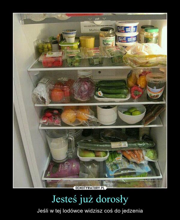 Jesteś już dorosły – Jeśli w tej lodówce widzisz coś do jedzenia
