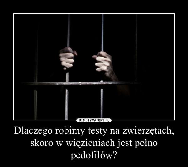 Dlaczego robimy testy na zwierzętach, skoro w więzieniach jest pełno pedofilów? –