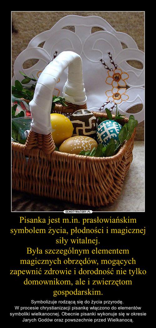 Pisanka jest m.in. prasłowiańskim symbolem życia, płodności i magicznej siły witalnej. Była szczególnym elementem magicznych obrzędów, mogących zapewnić zdrowie i dorodność nie tylko domownikom, ale i zwierzętom gospodarskim.