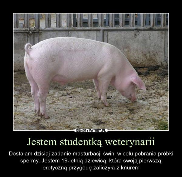 Jestem studentką weterynarii – Dostałam dzisiaj zadanie masturbacji świni w celu pobrania próbki spermy. Jestem 19-letnią dziewicą, która swoją pierwszą erotyczną przygodę zaliczyła z knurem