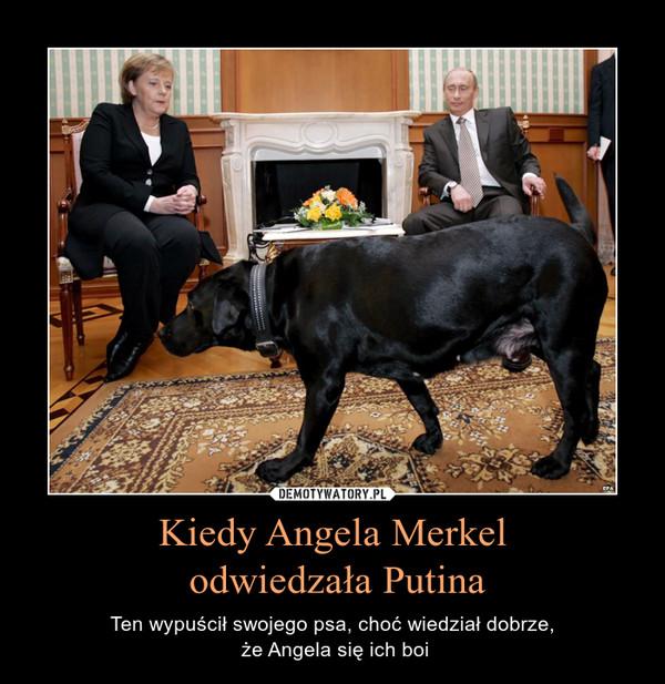 Kiedy Angela Merkel odwiedzała Putina – Ten wypuścił swojego psa, choć wiedział dobrze, że Angela się ich boi