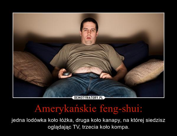 Amerykańskie feng-shui: – jedna lodówka koło łóżka, druga koło kanapy, na której siedzisz oglądając TV, trzecia koło kompa.