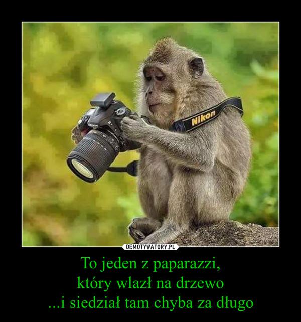 To jeden z paparazzi,który wlazł na drzewo...i siedział tam chyba za długo –