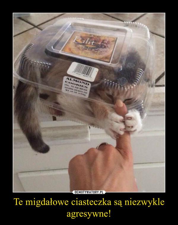 Te migdałowe ciasteczka są niezwykle agresywne! –