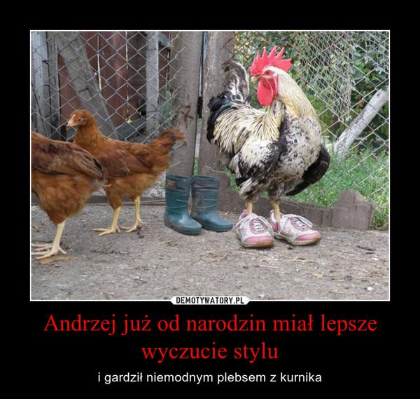 Andrzej już od narodzin miał lepsze wyczucie stylu – i gardził niemodnym plebsem z kurnika