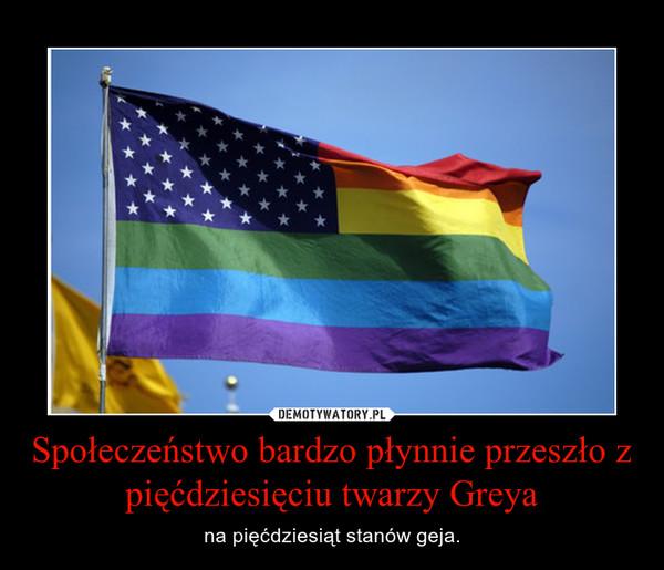 Społeczeństwo bardzo płynnie przeszło z pięćdziesięciu twarzy Greya – na pięćdziesiąt stanów geja.