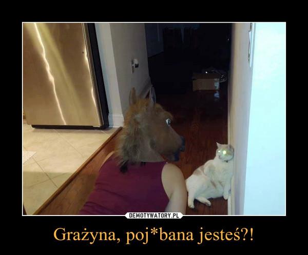 Grażyna, poj*bana jesteś?! –