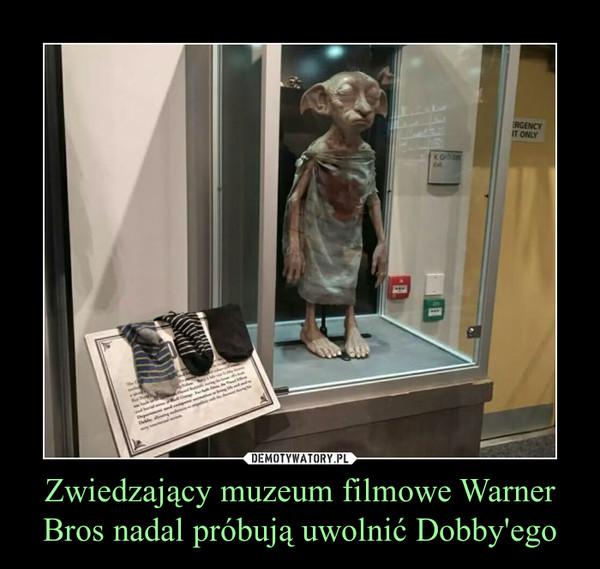 Zwiedzający muzeum filmowe Warner Bros nadal próbują uwolnić Dobby'ego –