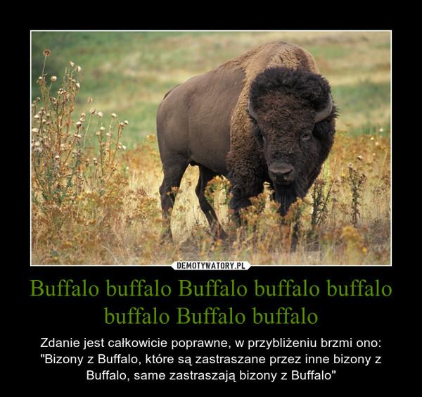 """Buffalo buffalo Buffalo buffalo buffalo buffalo Buffalo buffalo – Zdanie jest całkowicie poprawne, w przybliżeniu brzmi ono:""""Bizony z Buffalo, które są zastraszane przez inne bizony z Buffalo, same zastraszają bizony z Buffalo"""""""