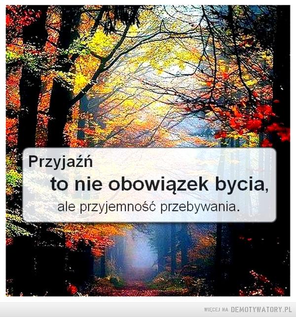 Przyjaźń... –