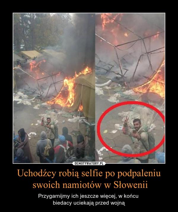 Uchodźcy robią selfie po podpaleniu swoich namiotów w Słowenii – Przygarnijmy ich jeszcze więcej, w końcu biedacy uciekają przed wojną