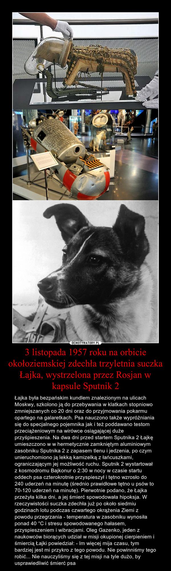 3 listopada 1957 roku na orbicie okołoziemskiej zdechła trzyletnia suczka Łajka, wystrzelona przez Rosjan w kapsule Sputnik 2 – Łajka była bezpańskim kundlem znalezionym na ulicach Moskwy, szkolono ją do przebywania w klatkach stopniowo zmniejszanych co 20 dni oraz do przyjmowania pokarmu opartego na galaretkach. Psa nauczono także wypróżniania się do specjalnego pojemnika jak i też poddawano testom przeciążeniowym na wirówce osiągającej duże przyśpieszenia. Na dwa dni przed startem Sputnika 2 Łajkę umieszczono w w hermetycznie zamkniętym aluminiowym zasobniku Sputnika 2 z zapasem tlenu i jedzenia, po czym unieruchomiono ją lekką kamizelką z łańcuszkami, ograniczającym jej możliwość ruchu. Sputnik 2 wystartował z kosmodromu Bajkonur o 2:30 w nocy w czasie startu oddech psa czterokrotnie przyspieszył i tętno wzrosło do 240 uderzeń na minutę (średnio prawidłowe tętno u psów to 70-120 uderzeń na minutę). Pierwotnie podano, że Łajka przeżyła kilka dni, a jej śmierć spowodowała hipoksja. W rzeczywistości suczka zdechła już po około siedmiu godzinach lotu podczas czwartego okrążenia Ziemi z powodu przegrzania - temperatura w zasobniku wynosiła ponad 40 °C i stresu spowodowanego hałasem, przyspieszeniem i wibracjami. Oleg Gazenko, jeden z naukowców biorących udział w misji okupionej cierpieniem i śmiercią Łajki powiedział: - Im więcej mija czasu, tym bardziej jest mi przykro z tego powodu. Nie powinniśmy tego robić... Nie nauczyliśmy się z tej misji na tyle dużo, by usprawiedliwić śmierć psa