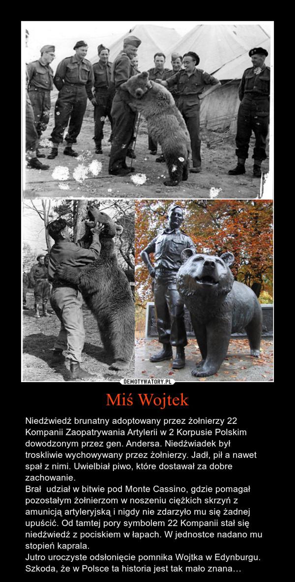 Miś Wojtek – Niedźwiedź brunatny adoptowany przez żołnierzy 22 Kompanii Zaopatrywania Artylerii w 2 Korpusie Polskim dowodzonym przez gen. Andersa. Niedźwiadek był troskliwie wychowywany przez żołnierzy. Jadł, pił a nawet spał z nimi. Uwielbiał piwo, które dostawał za dobre zachowanie.Brał  udział w bitwie pod Monte Cassino, gdzie pomagał pozostałym żołnierzom w noszeniu ciężkich skrzyń z amunicją artyleryjską i nigdy nie zdarzyło mu się żadnej upuścić. Od tamtej pory symbolem 22 Kompanii stał się niedźwiedź z pociskiem w łapach. W jednostce nadano mu stopień kaprala.Jutro uroczyste odsłonięcie pomnika Wojtka w Edynburgu. Szkoda, że w Polsce ta historia jest tak mało znana…