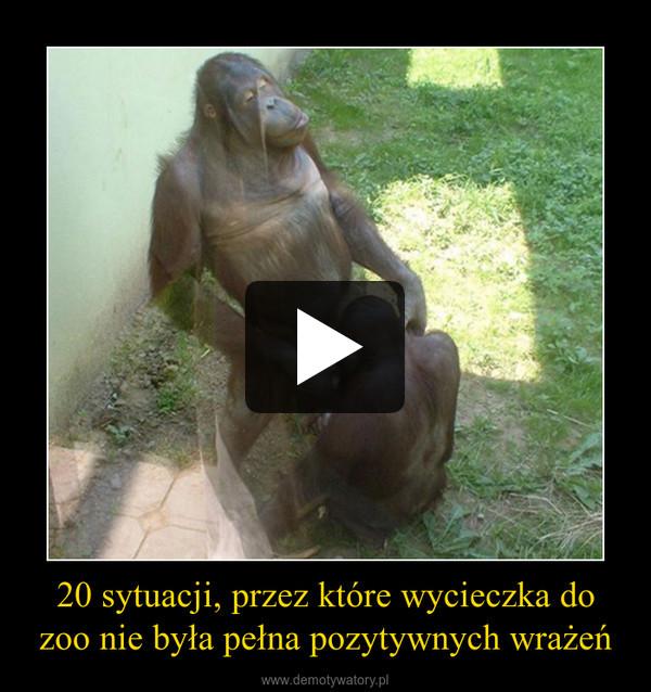 20 sytuacji, przez które wycieczka do zoo nie była pełna pozytywnych wrażeń –