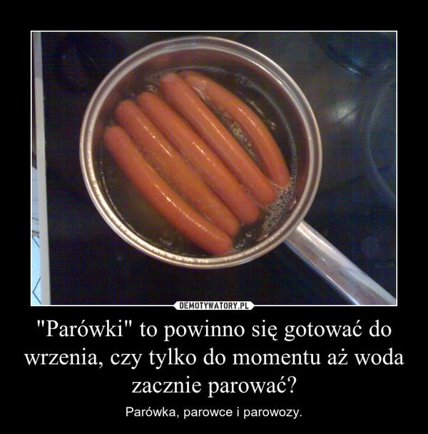 """""""Parówki"""" to powinno się gotować do wrzenia, czy tylko do momentu aż woda zacznie parować? – Parówka, parowce i parowozy."""