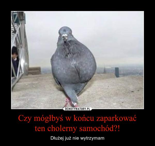 1454890109_ilpivs_600.jpg