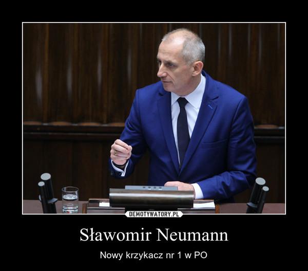Sławomir Neumann – Nowy krzykacz nr 1 w PO