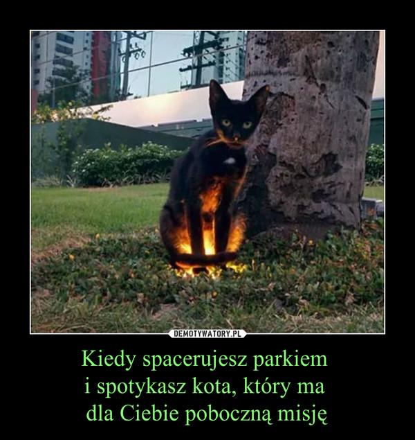 Kiedy spacerujesz parkiem i spotykasz kota, który ma dla Ciebie poboczną misję –
