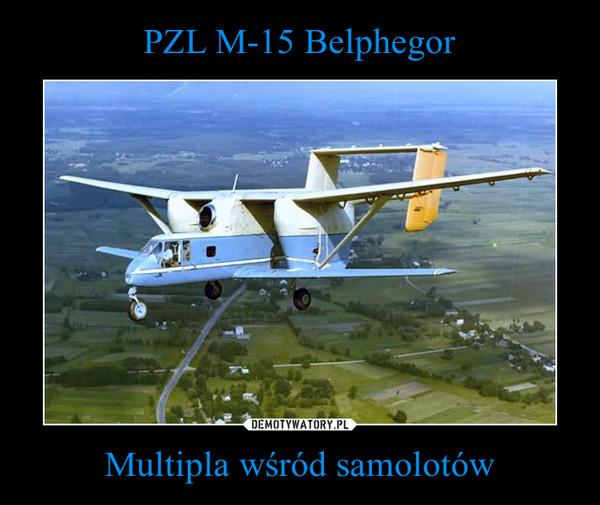 Multipla wśród samolotów –