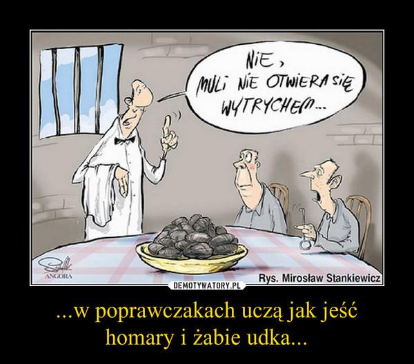 ...w poprawczakach uczą jak jeść homary i żabie udka... –