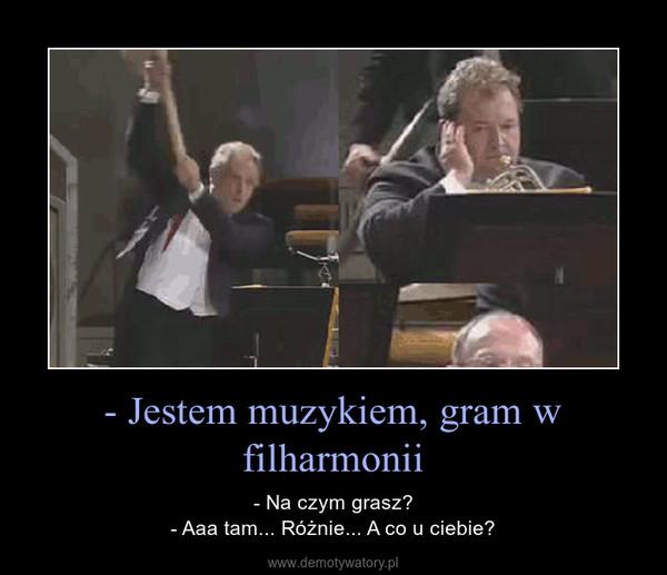 - Jestem muzykiem, gram w filharmonii – - Na czym grasz?- Aaa tam... Różnie... A co u ciebie?