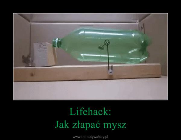 Lifehack:Jak złapać mysz –
