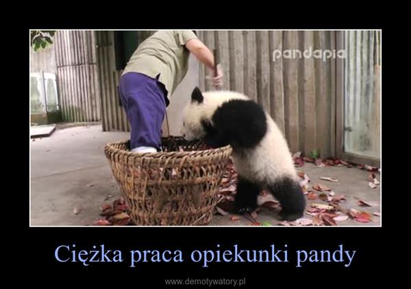 Ciężka praca opiekunki pandy –