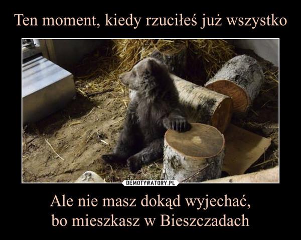 Ten moment, kiedy rzuciłeś już wszystko Ale nie masz dokąd wyjechać,bo mieszkasz w Bieszczadach