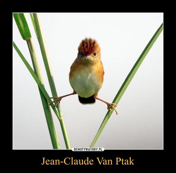 Jean-Claude Van Ptak –