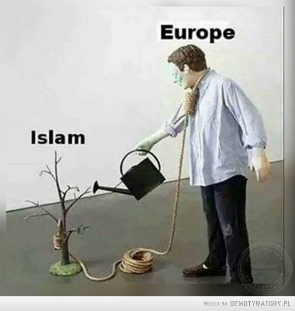 Tak to wygląda –  Islam Europe