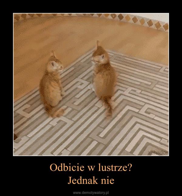 Odbicie w lustrze?Jednak nie –
