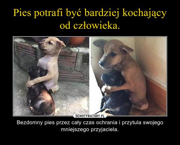 – Bezdomny pies przez cały czas ochrania i przytula swojego mniejszego przyjaciela.