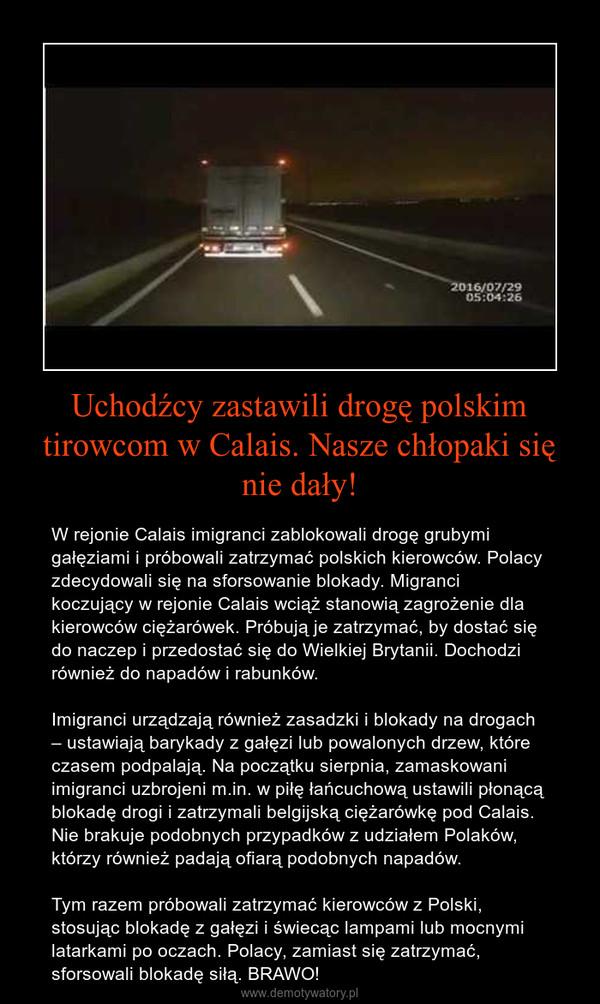 Uchodźcy zastawili drogę polskim tirowcom w Calais. Nasze chłopaki się nie dały! – W rejonie Calais imigranci zablokowali drogę grubymi gałęziami i próbowali zatrzymać polskich kierowców. Polacy zdecydowali się na sforsowanie blokady. Migranci koczujący w rejonie Calais wciąż stanowią zagrożenie dla kierowców ciężarówek. Próbują je zatrzymać, by dostać się do naczep i przedostać się do Wielkiej Brytanii. Dochodzi również do napadów i rabunków.Imigranci urządzają również zasadzki i blokady na drogach – ustawiają barykady z gałęzi lub powalonych drzew, które czasem podpalają. Na początku sierpnia, zamaskowani imigranci uzbrojeni m.in. w piłę łańcuchową ustawili płonącą blokadę drogi i zatrzymali belgijską ciężarówkę pod Calais. Nie brakuje podobnych przypadków z udziałem Polaków, którzy również padają ofiarą podobnych napadów.Tym razem próbowali zatrzymać kierowców z Polski, stosując blokadę z gałęzi i świecąc lampami lub mocnymi latarkami po oczach. Polacy, zamiast się zatrzymać, sforsowali blokadę siłą. BRAWO!