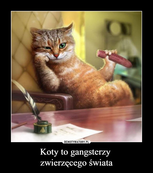 Koty to gangsterzy zwierzęcego świata –