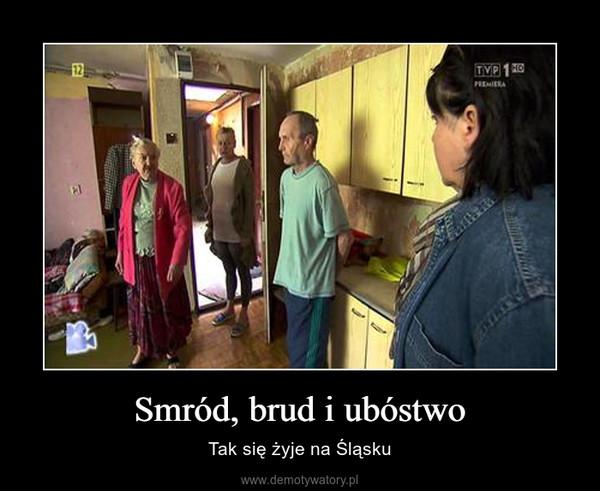 Smród, brud i ubóstwo – Tak się żyje na Śląsku