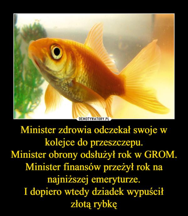 Minister zdrowia odczekał swoje w kolejce do przeszczepu.Minister obrony odsłużył rok w GROM. Minister finansów przeżył rok na najniższej emeryturze.I dopiero wtedy dziadek wypuściłzłotą rybkę –