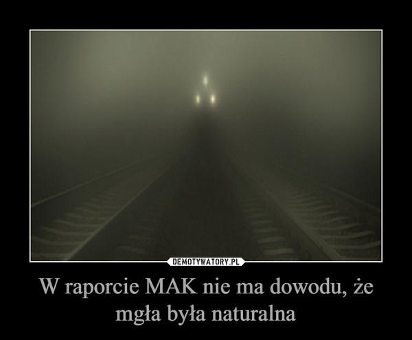 W raporcie MAK nie ma dowodu, że mgła była naturalna –