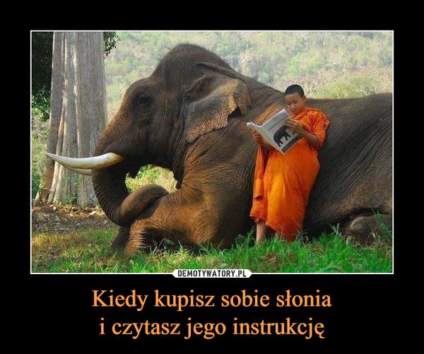 Kiedy kupisz sobie słoniai czytasz jego instrukcję –