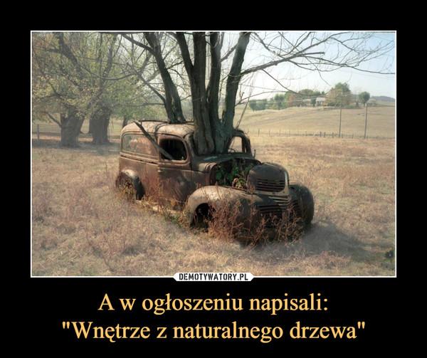 """A w ogłoszeniu napisali:""""Wnętrze z naturalnego drzewa"""" –"""
