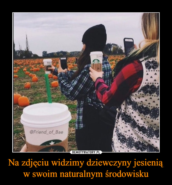 Na zdjęciu widzimy dziewczyny jesienią w swoim naturalnym środowisku –