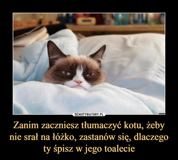 Zanim zaczniesz tłumaczyć kotu, żeby nie srał na łóżko, zastanów się, dlaczego ty śpisz w jego toalecie –