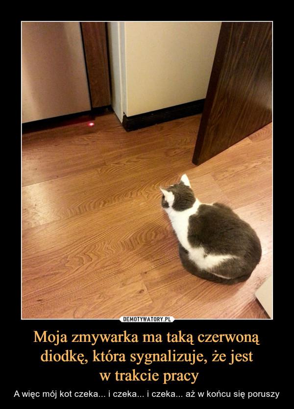 Moja zmywarka ma taką czerwoną diodkę, która sygnalizuje, że jest w trakcie pracy – A więc mój kot czeka... i czeka... i czeka... aż w końcu się poruszy