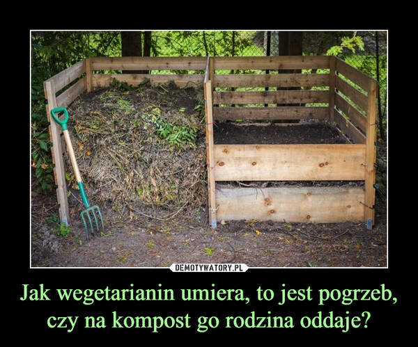 Jak wegetarianin umiera, to jest pogrzeb, czy na kompost go rodzina oddaje? –