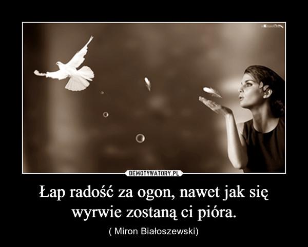 Łap radość za ogon, nawet jak się wyrwie zostaną ci pióra. – ( Miron Białoszewski)