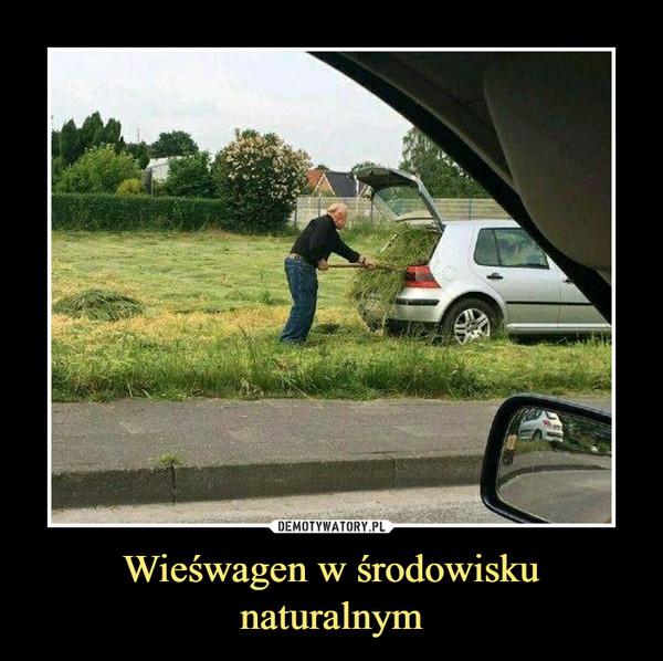 Wieśwagen w środowisku naturalnym –