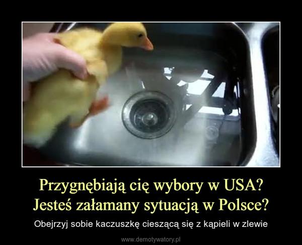 Przygnębiają cię wybory w USA?Jesteś załamany sytuacją w Polsce? – Obejrzyj sobie kaczuszkę cieszącą się z kąpieli w zlewie