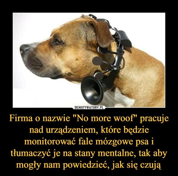 """Firma o nazwie """"No more woof"""" pracuje nad urządzeniem, które będzie monitorować fale mózgowe psa i tłumaczyć je na stany mentalne, tak aby mogły nam powiedzieć, jak się czują –"""