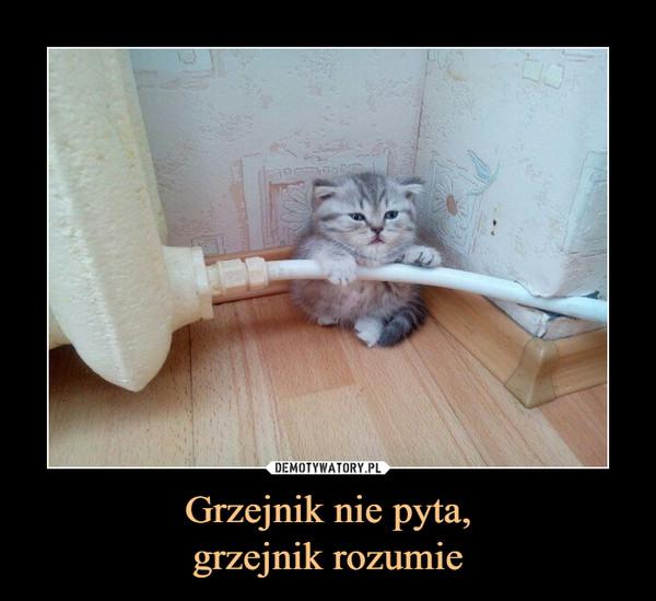 Grzejnik nie pyta,grzejnik rozumie –