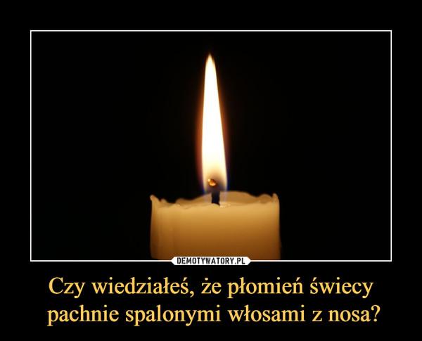 Czy wiedziałeś, że płomień świecy pachnie spalonymi włosami z nosa? –